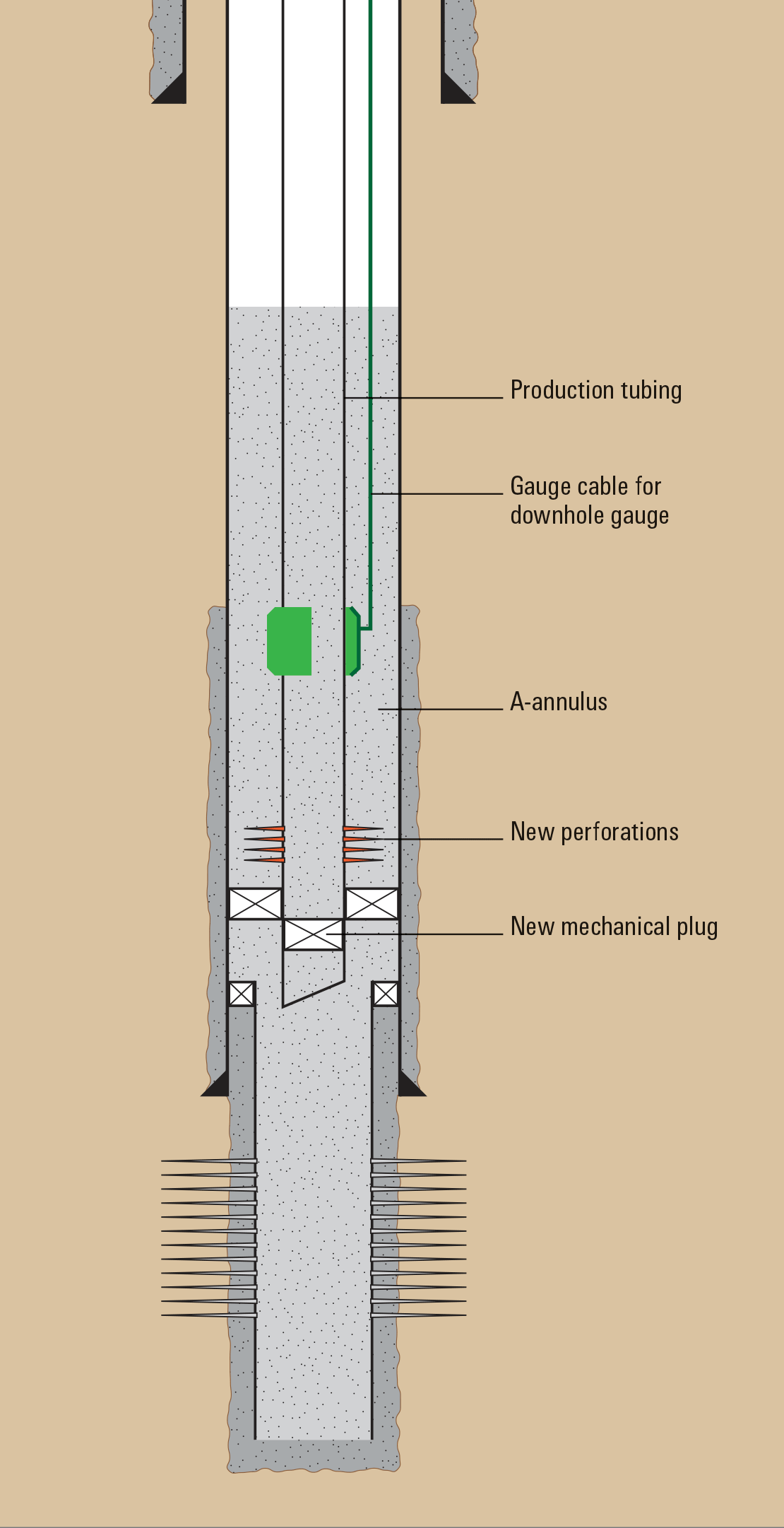 Diagram showing reservoir section, A-annulus, and production tubing with control lines and packers.