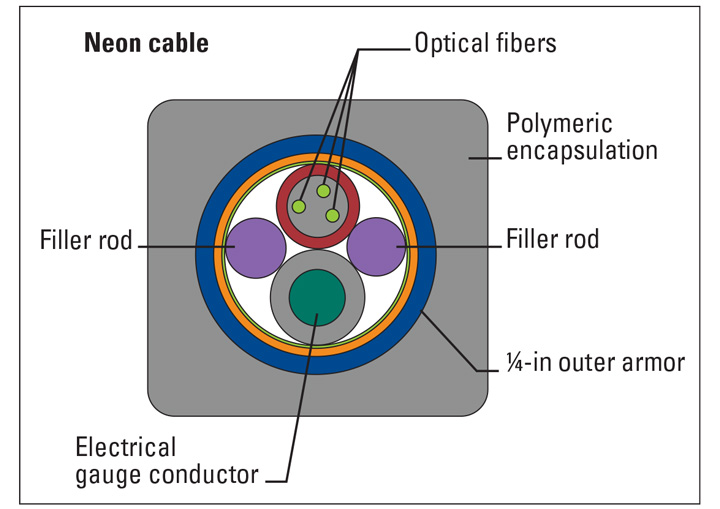 The WellWatcher Neon system has optical fibers and an electrical gauge conductor that are run in a single cable, allowing for distributed temperature and single-point pressure and temperature measurements.
