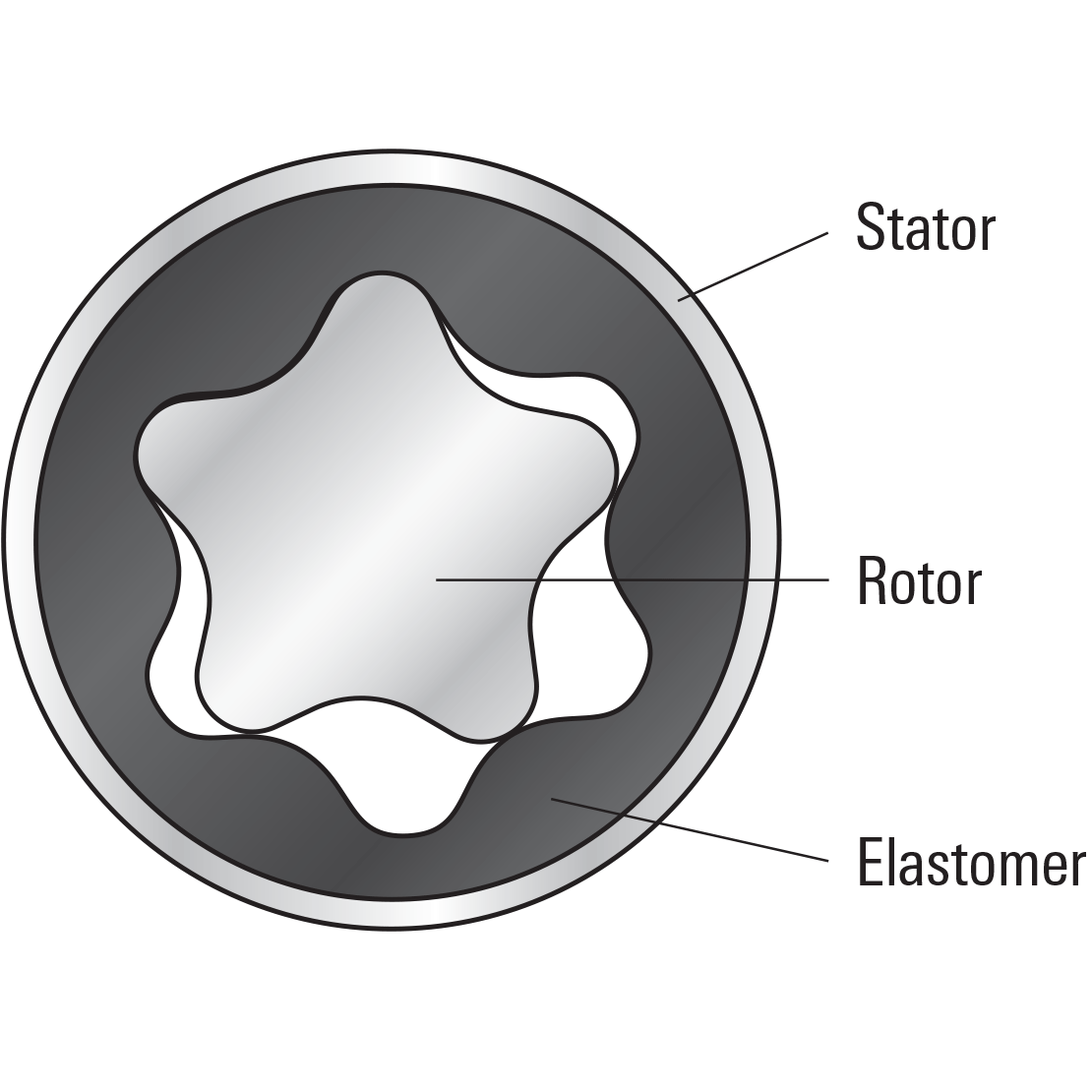Diagram highlighting the stator, rotor, and elastomer of a PowerPak motor