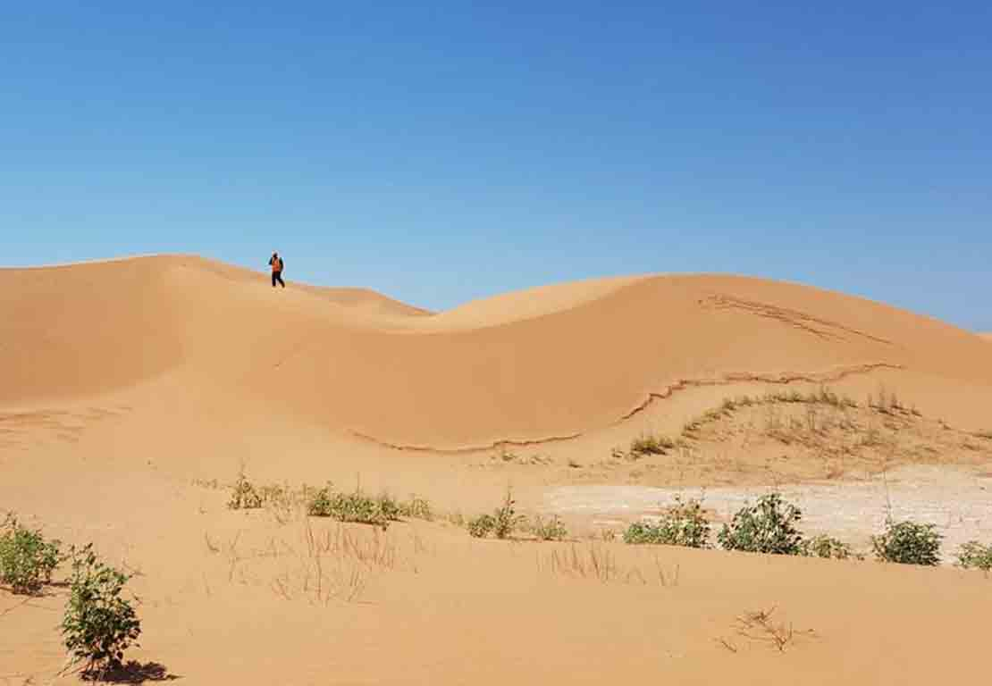 Person standing on sand dune.