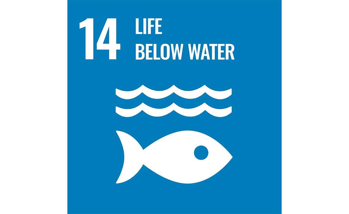 United Nations Sustainable Development Goal 14 Life Below Water icon