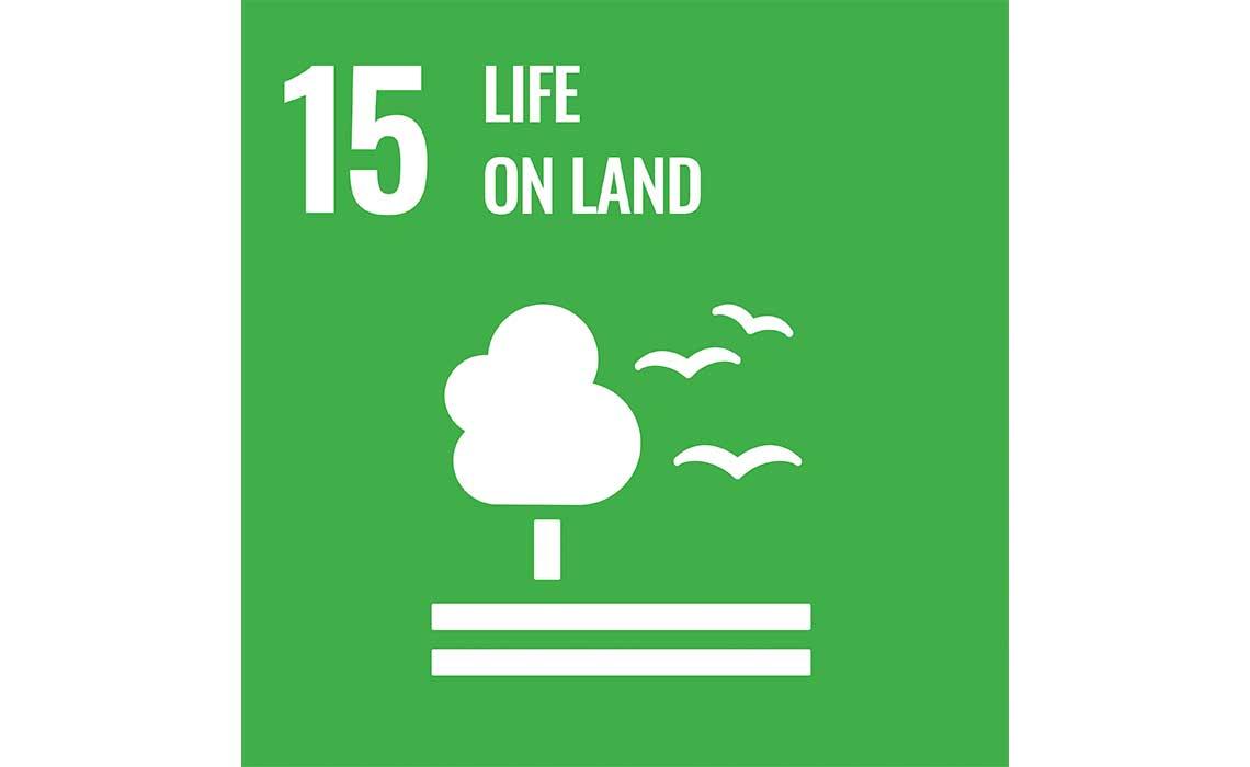 United Nations Sustainable Development Goal 14 Life on Land icon